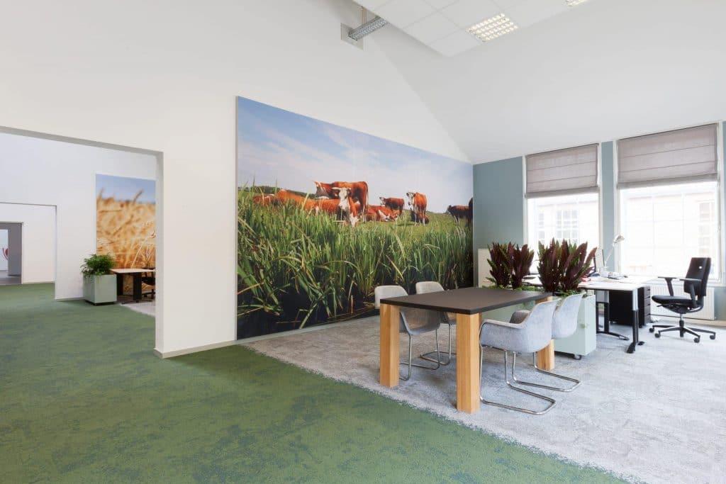 Duurzaam kantoor met een echt groen interieurontwerp